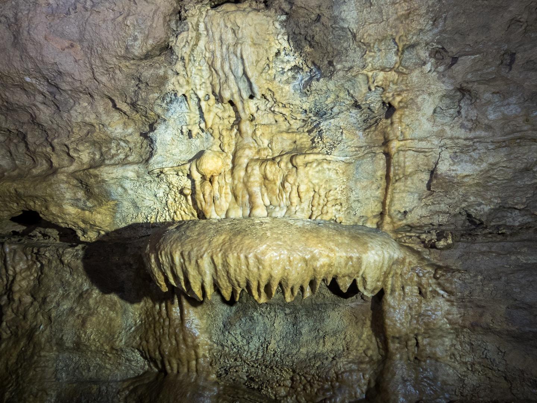 Rivière souterraine de Champdeniers - Concrétion le bénitier